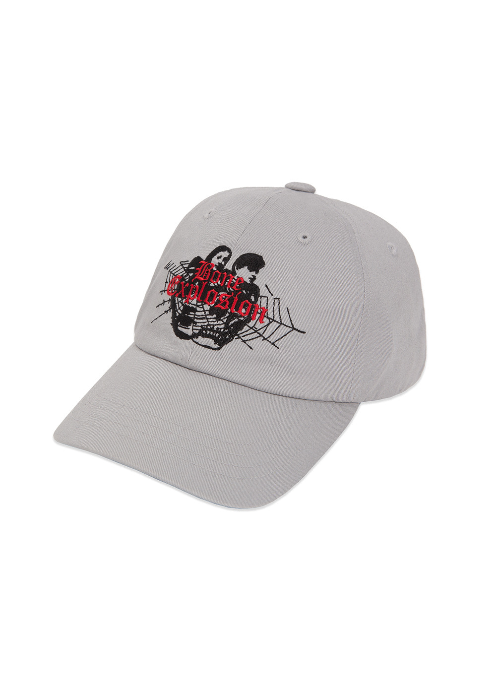 LMC BONE EXPLOSION 6 PANEL CAP gray